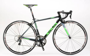 20s Carbon Fiber Road Bicycle for Men