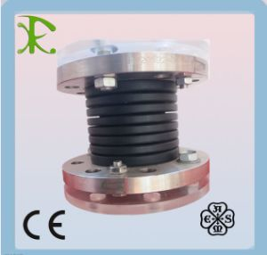 PTFE Expansion Joint for Vacuum Applications pictures & photos