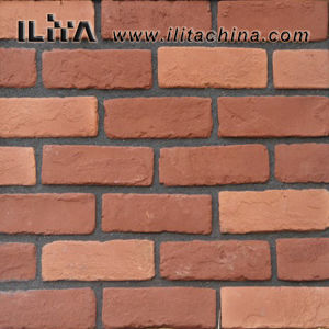 Art Brick Artificial Cultured Stone Wall Tiles Building Decoration (10013)