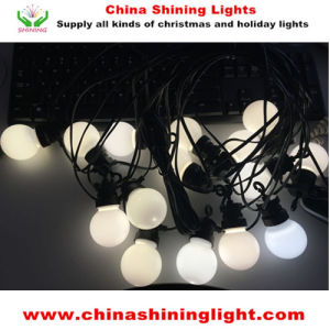 New White Color Multi Color Party Decoration LED Lights