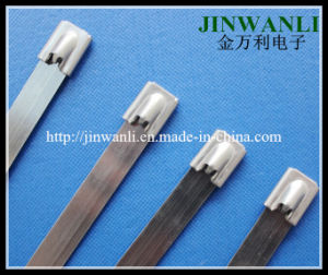 Ss 316 Naked Stainless Steel Cable Ties Wth Roller Ball Lock pictures & photos
