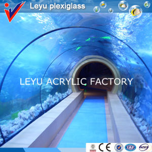 Acrylic Tunnel with Various Radian for Aquariums