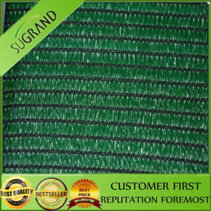 Green Shade Net Price/Anti Wind Dust Net pictures & photos