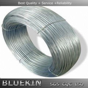Gold Supplier High Tensile Steel Wire