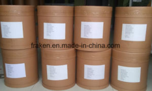High Quality Cp/USP Ginkgo Biloba Extract pictures & photos