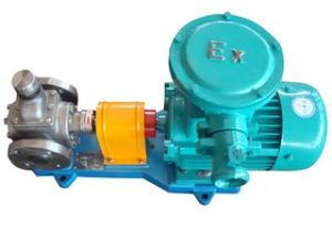 Ycb3.3 Stainless Steel Gear Oil Pump