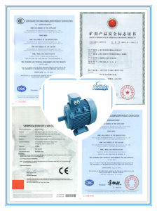 200kw Three-Phase Induction Electrical Motor for Water Pump pictures & photos