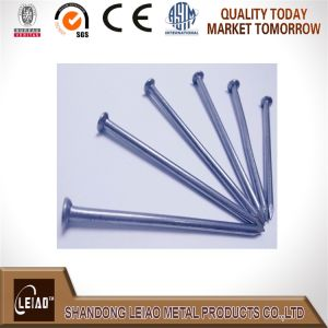 Common Wire Nails Made by Iron Q195 pictures & photos