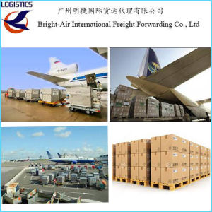 International Logistics Companies Express Mail FedEx DHL TNT UPS EMS  Delivery From China to Worldwide (USA etc )