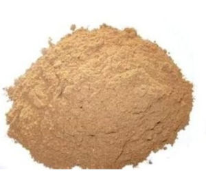 Asiatic Plantain Herb Extract