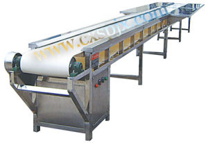 Poultry Slaughter Equipments: Flat Conveyor with Worktable