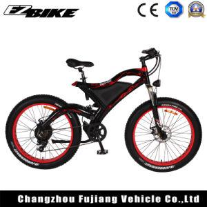 Wholesale Batteries E-bike