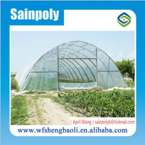 Low Price Hot Sale Plastic-Film Garden Greenhouse pictures & photos