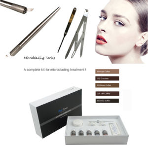3D Eyebrow Embroidery Pigment Cream Kits Microblading Pigment Kits pictures & photos