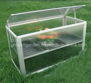 Cold Frame Greenhouse for Young Plants (C211) pictures & photos