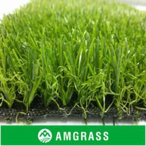 Environmentally Friendly Landscaping Grass