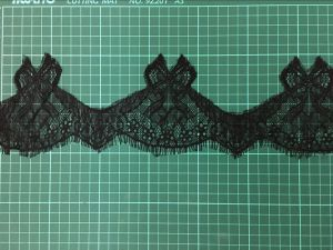 Garment Accessories Lace Trimming Lace Purfle Nylon Lace pictures & photos