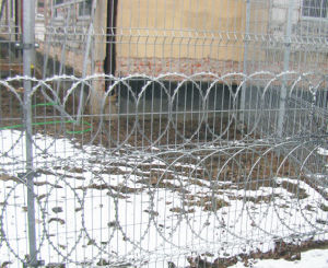 Fencing Anti-Climb Razor Barbed Wire pictures & photos