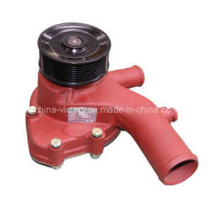 Water Pump (D32-1307020C) with Ts16949