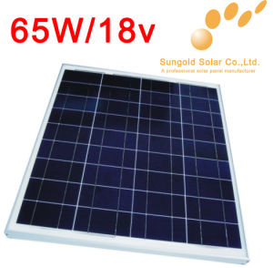Chinese Low Cost Best Seller High Quality Solar System for Sale (SGP-65W)