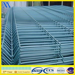 Welded Wire Mesh Panel for Fence (XA-WP11) pictures & photos