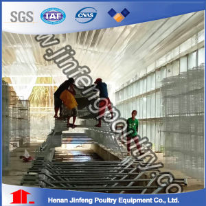 Automatic Layer Chicken Cage Equipment (A frame) pictures & photos