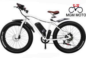 4.0 Fat Tire 500W Big Power Mountain Electric Bike pictures & photos
