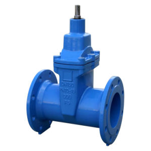 Flanged Resilient Gate Valve, DIN 3352-F5 Nrs pictures & photos