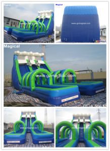 Funny Inflatable Water and Dry Slide (MJE-149) pictures & photos