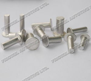 Flat Head, Solid Aluminium Rivet for Brake Lining (L-BS) pictures & photos