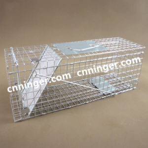China Animal Trap, Animal Trap Wholesale, Manufacturers