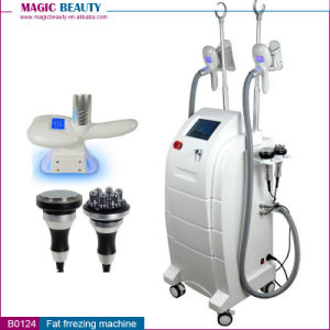 4 in 1 Factory Sale Fat Freeze Cryolipolysis Machine