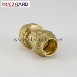 Brass PE Equal Straight Coupling