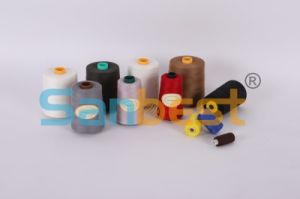 Cotton Wrapped Poly Core Sewing Thread pictures & photos