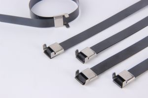 High Quality Plastic Nylon Cable Tie Ball Lock Stainless Steel Cable Tie pictures & photos