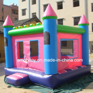 Inflatable Combo/Inflatable Bouncer Slide