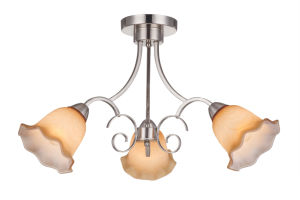 Nice Ceiling Chandelier Lamp