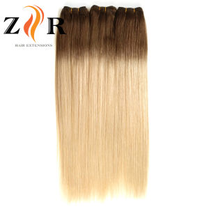 Balayage Colours Virgin Brazilian Remy Human Hair Weft pictures & photos