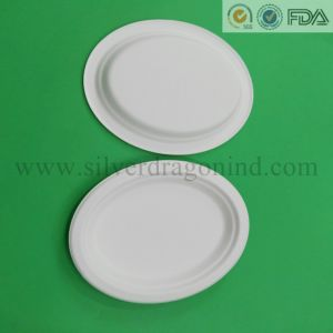 Biodegradable Disposable Paper Plate Bowl Box Cup & China Biodegradable Disposable Paper Plate Bowl Box Cup - China ...