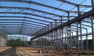 Long Span Steel Structure Building/Lightweight Steel Structure pictures & photos