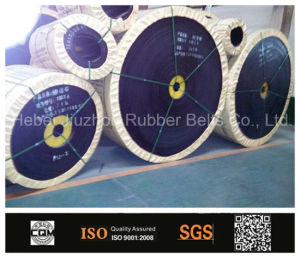 Chinese Manufacture Conveyor Belt pictures & photos