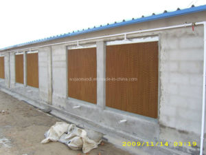 Evaporative Cooling Pad for Poultry House pictures & photos