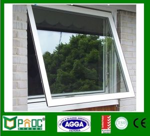 Aluminum Awning Window with Double Glass Australia Standard Pnocaw0006 pictures & photos