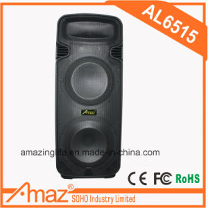 "Double 15"" Loudspeaker with Wireless Microphones/USB/ SD/ TF Card/FM"