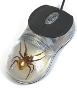 Novel Real Insect Computer Mouse-Scorpion