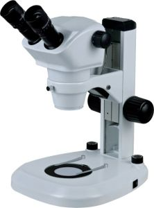 Bestscope BS-3040 Zoom Stereo Microscope pictures & photos