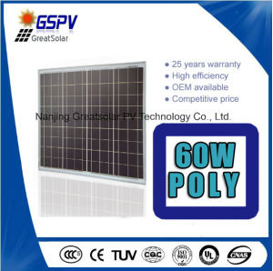 Hot Sale in Nigeria, UAE etc...60W Solar Panels Polycrystalline pictures & photos