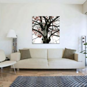 Modern Decoration Art Set pictures & photos