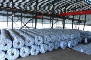 Stainless Steel Coil (201 \304 grade) pictures & photos