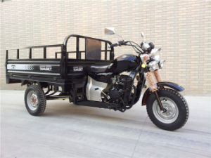 Wholesale 250cc Gasoline Auto Rickshaw with Water Cooling pictures & photos